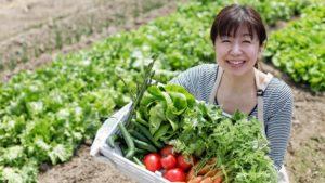 おすすめ野菜宅配の選び方&比較ランキング!